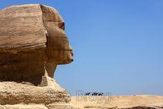 Sphinx and horsemen - Stock Photo