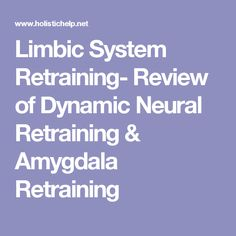 Limbic System Retraining- Review of Dynamic Neural Retraining & Amygdala Retraining