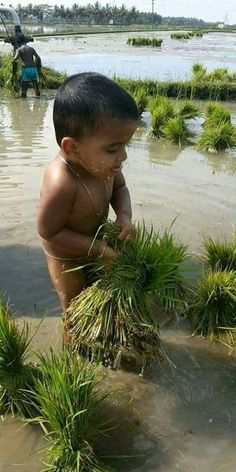 Poor children bangladesh 24 ideas for 2019 Poor Children, Precious Children, Save The Children, Beautiful Children, Beautiful Babies, Children Working, The World Song, We Are The World, People Around The World