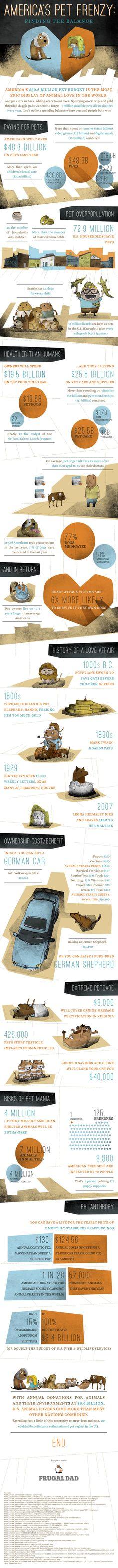 Interesting pet statistics