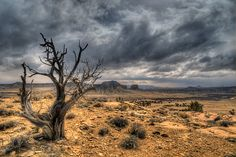 Landscape and March sky in Cabezon Peak Wilderness Area of New Mexico