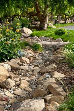 the line of dark rocks creates a very serene gravel garden/dry creek.I am going to be putting in a dry creek bed in my backyard at the end off my down spout where all of the mulch always washes away.I already have all of the rock to put in place. Landscaping With Rocks, Front Yard Landscaping, Landscaping Ideas, Dry Riverbed Landscaping, Landscaping Software, Farmhouse Landscaping, Landscaping Edging, River Rock Landscaping, Landscaping Melbourne
