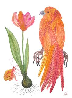 parrots bird art tropical large original gouache painting. by gollybard