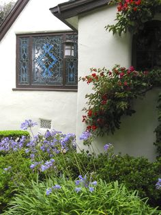 Those purple flowers look great under by the house and under the window
