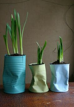 Crushed cans, painted and used as pots for bulbs