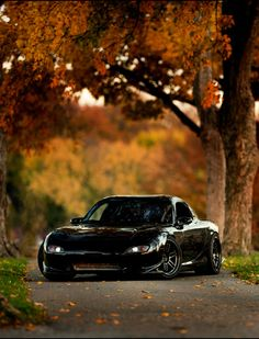 RX-7 FD in the woods.