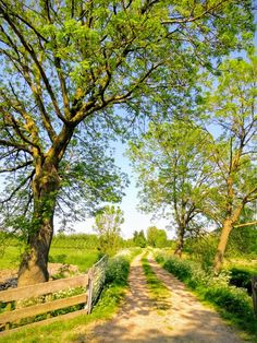 My inner landscape Wonderful Places, Beautiful Places, Beautiful Pictures, Cenas Do Interior, Country Life, Country Roads, Landscape Photography, Nature Photography, Country Scenes