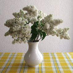 If your home is decorated with fresh cut flowers in a vase, use these tips to make the flowers last longer. Flowers Last Longer, Syringa Vulgaris, Cut Flowers, Flower Vases, Planting Flowers, Home And Garden, Fresh, Plants