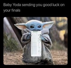 Finals week memes Pictures That Will Make People With Siblings Laugh Harder Than They Should Yoda Pictures, Yoda Images, Funny Images, Funny Pictures, Yoda Meme, Yoda Funny, Math Memes, Student Memes, Finals Week Humor