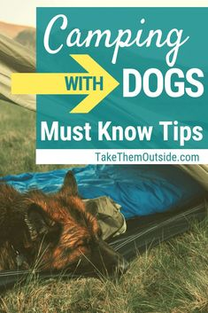 Camping with dogs in summer can be a ton of fun. Find some of the best gear for camping with dogs plus gain tips and ideas on how to make your camping (or hiking trip) with your dog the best it can be. Camping Bedarf, Camping Rules, Camping Guide, Camping Checklist, Camping Essentials, Camping With Kids, Family Camping, Camping Hacks, Outdoor Camping