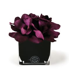 Discover the Herve Gambs Purple Couture Orchid & Black Glass Cube at Amara Silk Orchids, Purple Orchids, Purple Roses, Silk Flower Bouquets, Silk Flowers, Fabric Flowers, Purple Fabric, Artificial Flowers And Plants, Fake Flowers