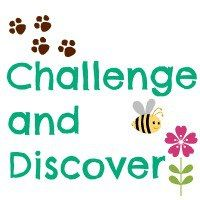 Challenge and Discover
