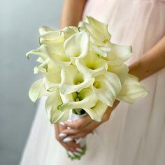 Wedding flowers, каллы самые скромно-роскошно цветы. Vegetables, Rose, Vip, Flowers, Plants, Handmade, Pink, Hand Made, Vegetable Recipes
