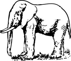 Download Elephant Drawing clip art Vector Free