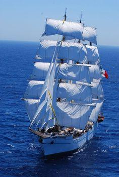 Ship and Sea Sailboat Yacht, Old Sailing Ships, Shrimp Boat, Full Sail, Life Aquatic, Boat Painting, Small Boats, Speed Boats, Tall Ships