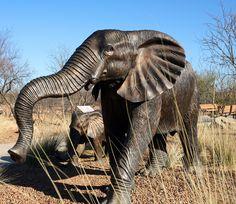 Rancho #Sahuarita Safari Trail #RanchoSahuaritaDay Sahuarita Arizona, Green Valley, Public Art, Tucson, Safari, Trail, Elephant, Scene, Places