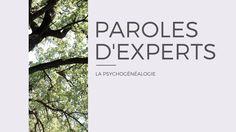 Maureen Boigen nous parle de psychogénéalogie sur le blog !