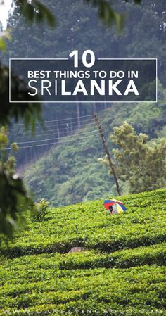 Tea plantations, Elephant safari, private beaches and the best food. Get there…
