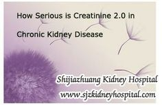 How serious is creatinine 2.0 in Chronic Kidney Disease? Exclude dietary influence, high creatinine level means the kidney is damaged in some degree, then cretinine level 2.0 means what for people ?
