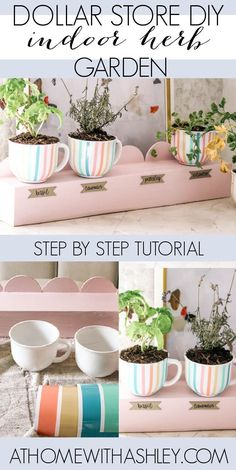 Dollar store DIY indoor herb garden. This little kitchen herb garden is affordable and cute! It has a scallop design and is painted pink. This is the perfect project for beginners with gardening and using a Cricut cutting machine. It is meant for small spaces and would be beautiful in apartments. Thank you to Cricut for sponsoring this video #cricutcreated