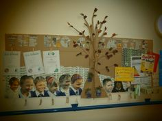 Our Eco council diplay board complete with living herbs!