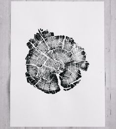 Burned Yellowstone National Park Tree Ring Art Print, No. 2 by LintonArt on Scoutmob