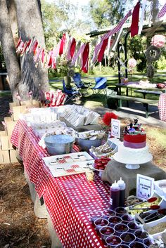 "Photo 7 of 43: Picnic - Red & White Gingham / Birthday ""Picnic in The Park for Tahlin's 4th Birthday Party"" 