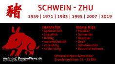 Chinesische Tierkreiszeichen: Schwein - Fakten | © premiumdesign - fotolia.com / DragonViews