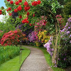 Rosenbogen Modern image result for pavilion arch gardening