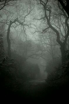 Into the darkness♥