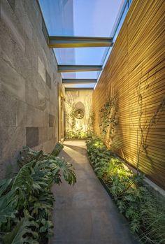 Gallery of CSF House / López Duplan Arquitectos - 5