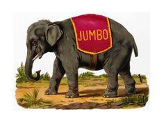 Jumbo the Elephant Art Print at AllPosters.com