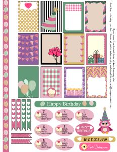 Birthday Sticker Sampler Kit for Happy Planner and ECLP