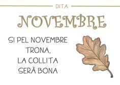 Dites mesos de l'any - Lila La - Álbumes web de Picasa