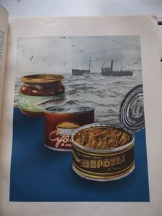 Iconic Cookbook of the Soviet Union Book of by Fieldofwonders