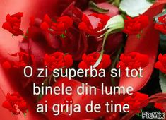 o zi superba sa ai grija iti doresc tot binele din lume Good Morning Video Songs, Good Morning Gif, Clara Alonso, Best Dance, Flower Frame, Thankful, Be Nice, Romantic Pictures