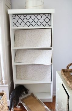 Wrap a piece of cardboard in fabric and put at back of bookcase instead of painting or wallpaper