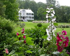 Les 15 plus beaux jardins du Québec - Châtelaine Wild Ginger, Garden Quotes, Closer To Nature, Plant Species, Trees And Shrubs, Beautiful Roses, Pathways, Botanical Gardens, Vegetable Garden