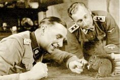 WWI & WWII Military Historian.