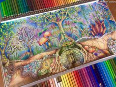 In this post you will meet coloring book artist patrik giacomelli coloring Secret Garden Coloring Book, Coloring Book Art, Colouring, Adult Coloring, Enchanted Forest Book, Enchanted Forest Coloring Book, Johanna Basford Secret Garden, Johanna Basford Coloring Book, Colored Pencil Techniques
