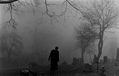 Perfect for profile pic. Gloomy cemetery