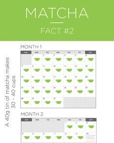 #matcha #matchagreentea #matchafacts #matchalove #justmatcha