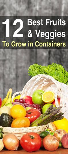 Gardening Container 12 Best Fruits and Veggies to Grow in Containers - The majority of fruits and vegetables can be grown in containers with a little work. However, there are a few types that are easier to grow than others. Bucket Gardening, Indoor Vegetable Gardening, Organic Gardening Tips, Hydroponic Gardening, Aquaponics, Herb Gardening, Potted Garden, Hydroponic Systems, Gardening Quotes