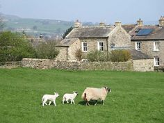 Cross Beck Cottage | Reeth | Grinton | Yorkshire Dales | Self Catering Holiday Cottage