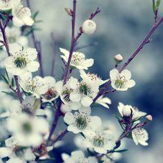 Spring #BeataCzyzowskaYoung