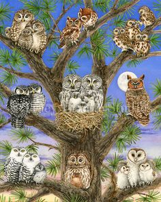 Owl Tree archival watercolor print by Tracy by TracyLizotteStudios