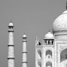 Taj Mahal, Agra - Papote de pomme