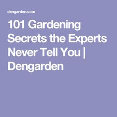 101 Gardening Secrets the Experts Never Tell You | Dengarden