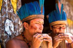 Amazonas, la selva superlativa, uno de los últimos rincones del planeta donde aún se pueden encontrar sorpresas como nuevas especies animales, nuevas plantas e incluso nuevas tribus que aún no han tenido contacto con la civilización #atlantaexperiencias #atlantaexperiences #amazonas #brasil #Suramerica #Southamerica #experienciasdelujo #viajesamedida #viajesdeincentivo #incentivetravel #vacation #holidays #vacaciones #luxury #experiences #viaje #trip #travel…