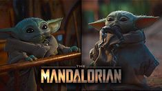 Watch the top 10 cutest Baby Yoda scenes from The Mandalorian tv series. The action tv series stars Pedro Pascal, Carl Weathers, Gina Carano. Lightsaber Color Meaning, Lightsaber Colors, Carl Weathers, Dallas Howard, Taika Waititi, Color Meanings, Mandalorian, Episode 5, Disney S